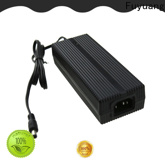 Fuyuang electric lifepo4 battery charger for Audio