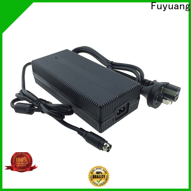 Fuyuang lion battery charger factory for LED Lights