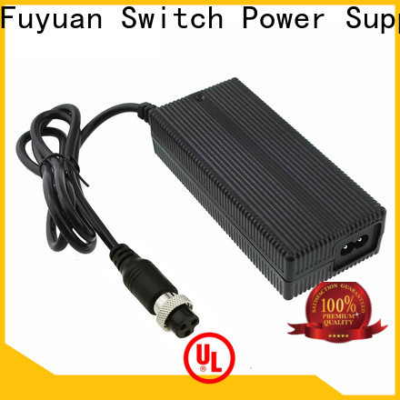 Fuyuang golf lion battery charger producer for Audio