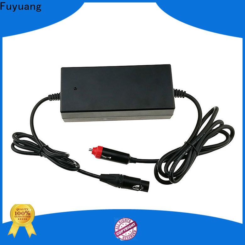 Fuyuang 36v car charger for Batteries