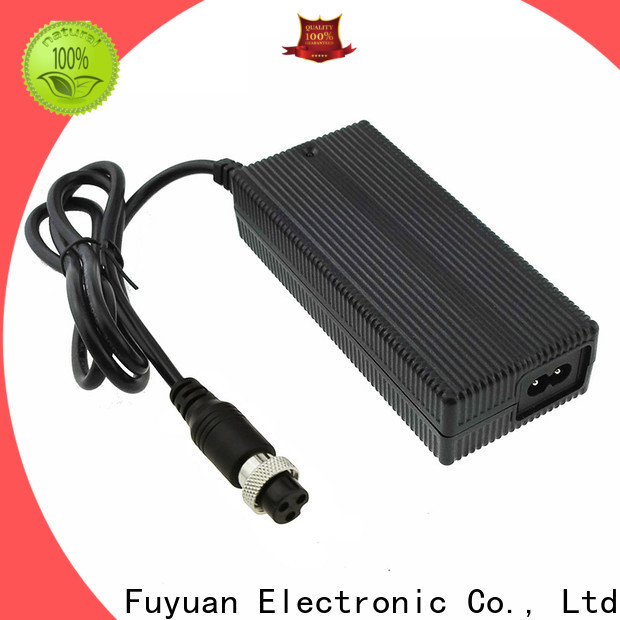 newly lifepo4 battery charger ce for LED Lights