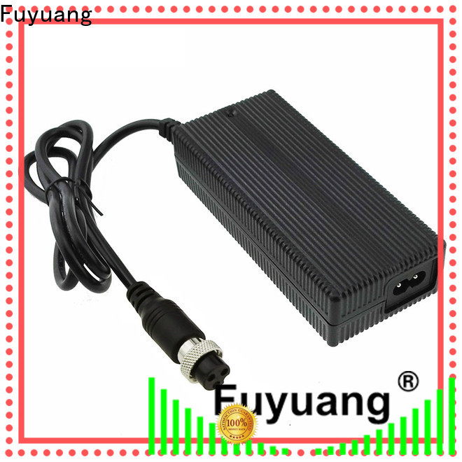 Fuyuang new-arrival lifepo4 charger producer for LED Lights