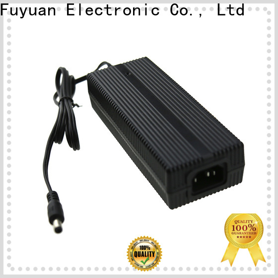 Fuyuang 2a lithium battery charger manufacturer for LED Lights