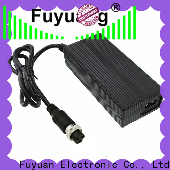 Fuyuang 48v lithium battery chargers vendor for Electric Vehicles