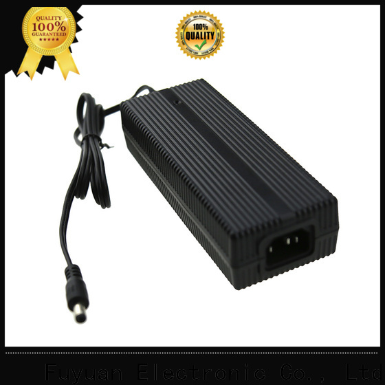 Fuyuang electric battery trickle charger for Audio