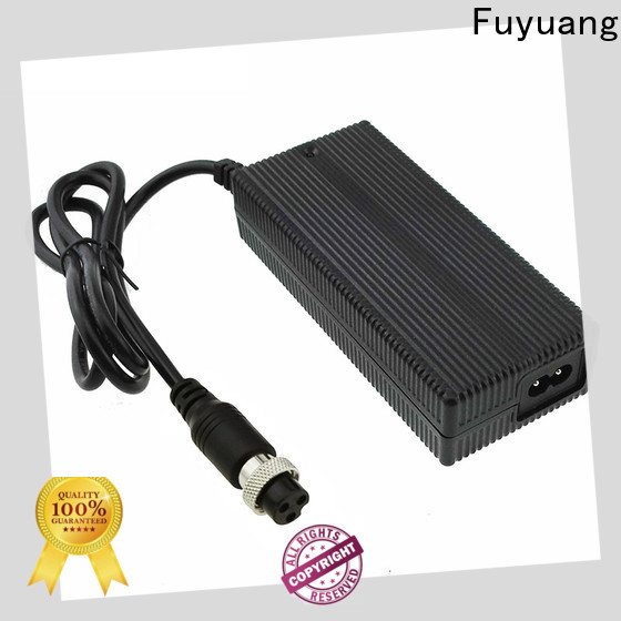 Fuyuang hot-sale lion battery charger for Audio
