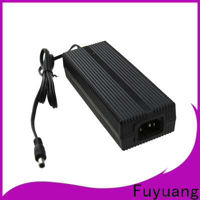 new-arrival lifepo4 charger 12v for Audio