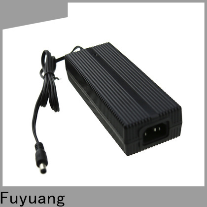 Fuyuang fine- quality lifepo4 charger factory for Electric Vehicles
