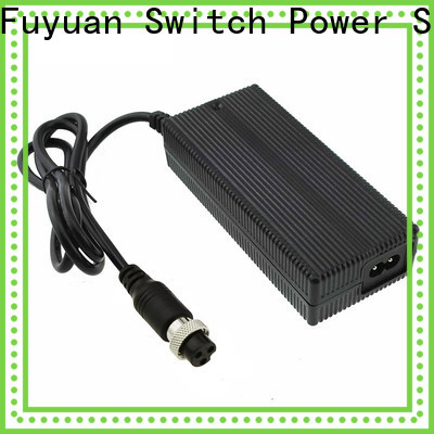 hot-sale lion battery charger lithium supply for Electric Vehicles