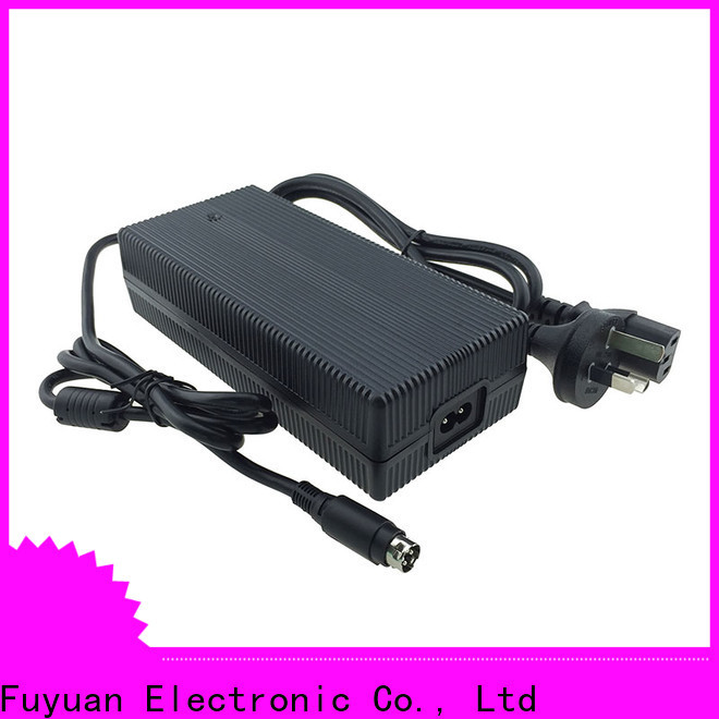 Fuyuang new-arrival lifepo4 charger for LED Lights