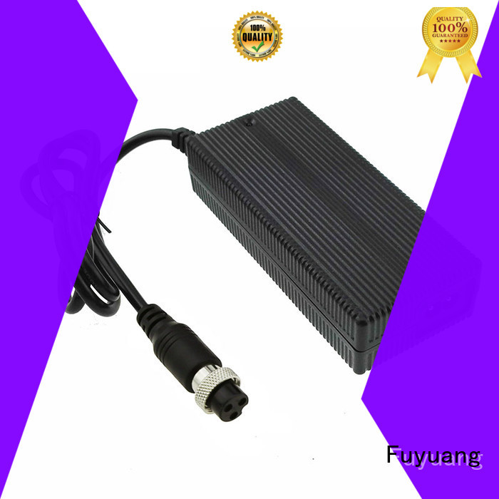 Fuyuang lifepo4 charger  manufacturer for Audio