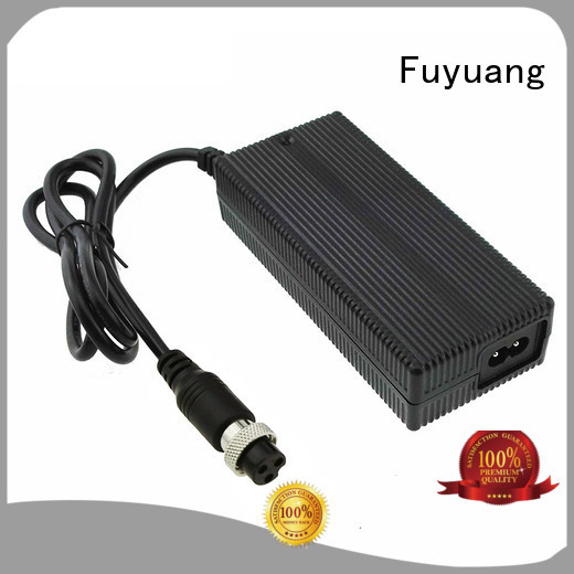 Fuyuang new-arrival battery trickle charger vendor for Electric Vehicles