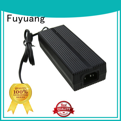Fuyuang global lion battery charger factory for LED Lights